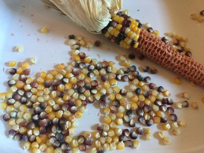 Five Kernels of Corn